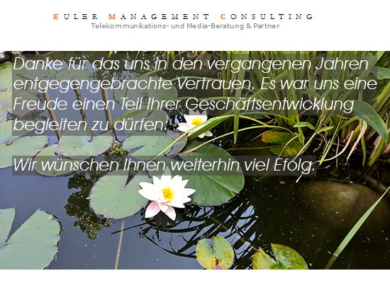 Euler Management Consult